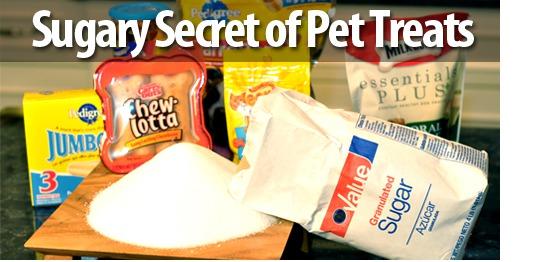 Sugary Secret of Pet Treats
