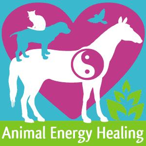 Animal Energy Healing
