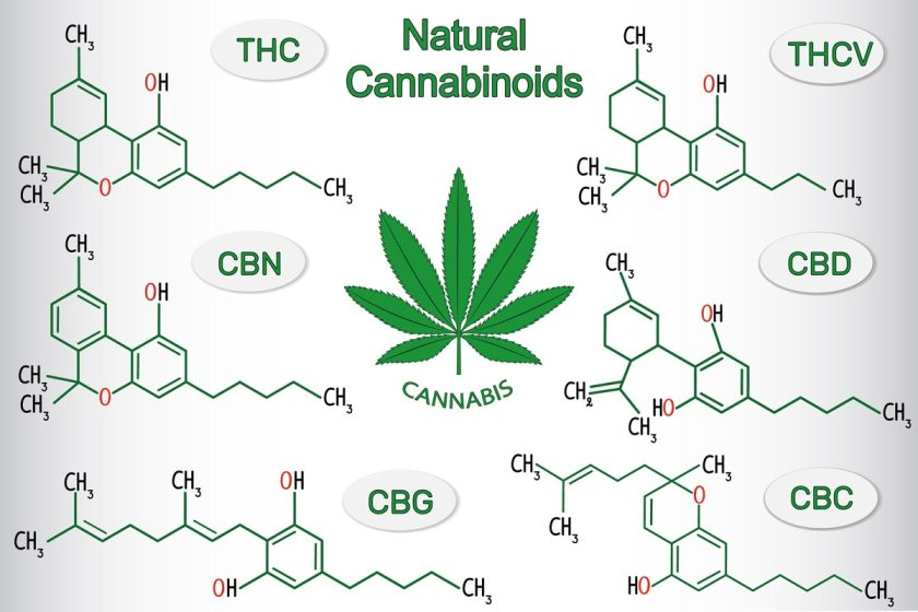 natural-cannabinoids