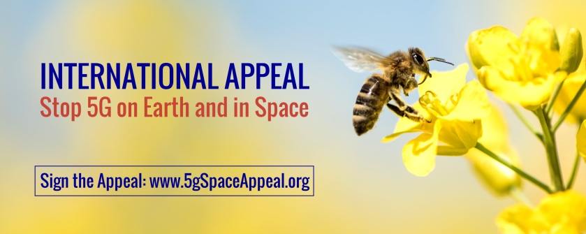 Stop 5G Appeal